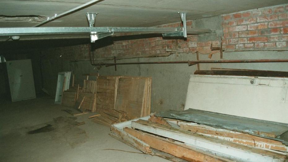 Полицейские нашли мать малышей, брошенных в подвале на Рижском