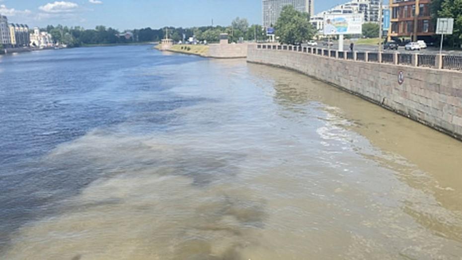 Росприроднадзор проверяет загрязнение Малой Невки у Песочной набережной