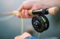 Росрыболовство сможет пресекать незаконную рыбалку на особо охраняемых территориях