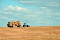 Сенаторы одобрили закон о страховании фермеров от стихийных бедствий