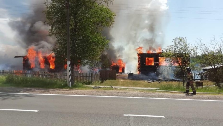 Сильный ветер раздул крупный пожар под Великим Новгородом