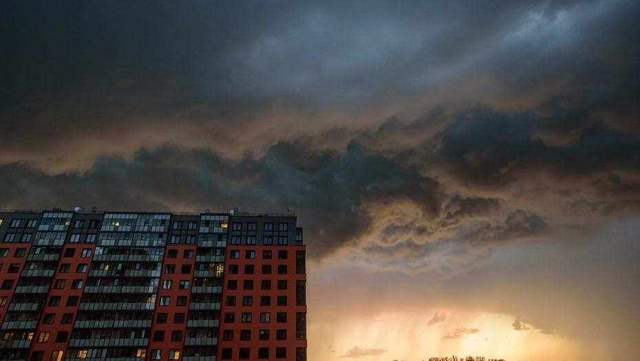 МЧС предупредило о шквалистом ветре и ливнях в Ленинградской области