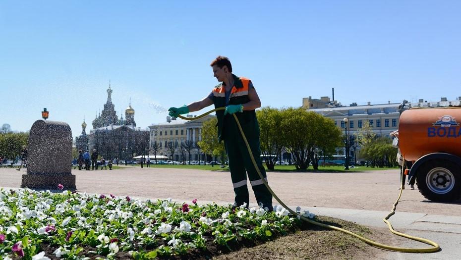 На полив газонов и деревьев в Петербурге потратили 1,2 тыс. кубометров воды