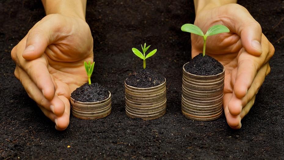 """Притяжение трёх букв: почему """"зелёные"""" облигации привлекают инвесторов"""
