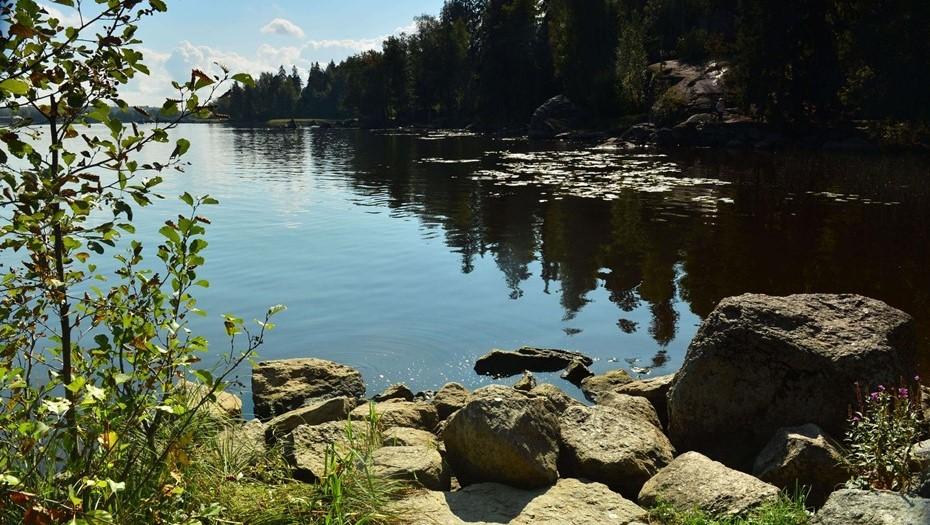 Последнее воскресенье лета в Ленобласти будет тёплым, но облачным