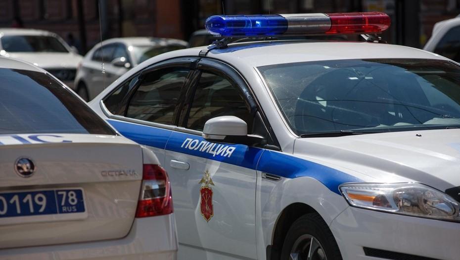 Полиция задержала подозреваемого в нападении на курьера в Невском районе