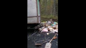 Росприроднадзор установит тех, кто сбрасывал мусор в Старопетергофский канал