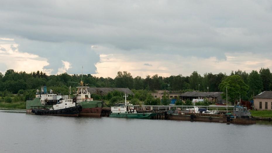 Повышенное содержание меди и цинка выявили в водоёмах Петербурга