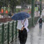 В Петербурге перед ураганом закрыли парки и скверы